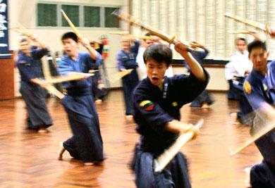combate com duas espadas