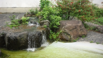 Água da Fonte - Estar com o Mestre é essêncial no Caminho